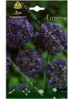 Лук декоративный Азуреум (Allium Azureum)