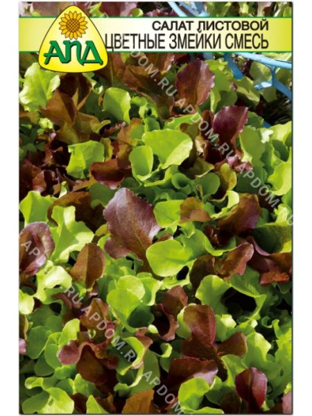 Салат листовой Цветные Змейки смесь