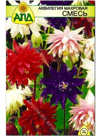 Аквилегия махровая смесь (Aquilegia vulgaris)