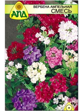 Вербена ампельная смесь (Verbena hybrida pendula)