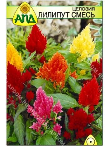 Целозия Лилипут смесь (Celosia plumosa nana)